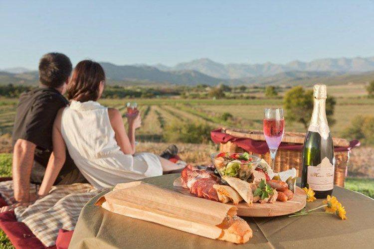 Romantic picnic at Surval Boutique Olive Estate